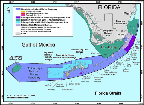 The System Of Marine Protected Areas In Florida Which Is Much Larger Than Reef Nurseries 3